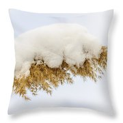 Winter Reed Under Snow Throw Pillow