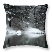 Winter Reflection 004 Throw Pillow