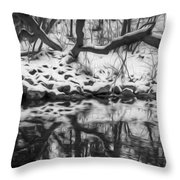 Winter Reflection Throw Pillow
