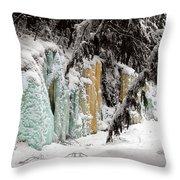 Winter Revelation Throw Pillow