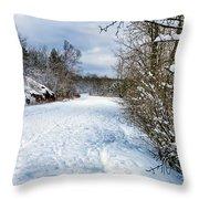 Winter Road Throw Pillow
