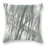 Winter Road Dream Throw Pillow