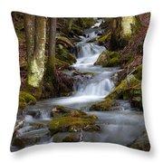 Winter Runoff Throw Pillow