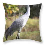 Winter Sandhill Crane Throw Pillow