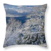 Winter Scene At Berry Summit Throw Pillow