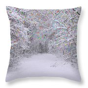 Winter Scene With Lights Throw Pillow