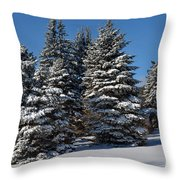 Winter Scenic Landscape Throw Pillow