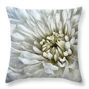 Winter Shade Of Pale Throw Pillow