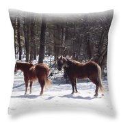 Winter Shadow Horses Throw Pillow