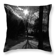Winter Shadow Throw Pillow