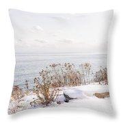 Winter Shore Of Lake Ontario Throw Pillow