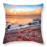 Winter Shore Throw Pillow