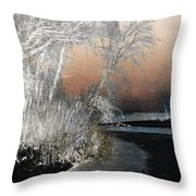 Winter Shroud Throw Pillow