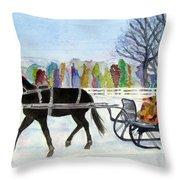 Winter Sleigh Ride Throw Pillow