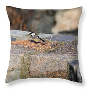 Winter Snack Throw Pillow