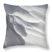Winter Snow Drift Sculpture  Throw Pillow