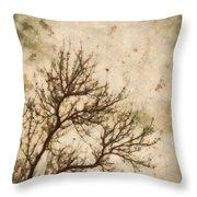 Winter Solitude Throw Pillow