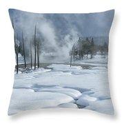 Winter Solitude Throw Pillow by Sandra Bronstein