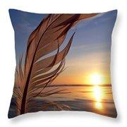Winter Solstice 2011 Throw Pillow