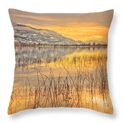 Winter Solstice 5 Throw Pillow