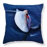 Winter Spin... Swan Style Throw Pillow