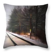 Winter Splash Xxxiii Throw Pillow