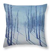 Winter Splendor Throw Pillow