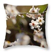 Winter Spring Almond Flowers Throw Pillow
