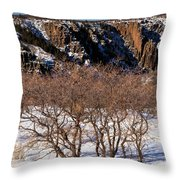 Winter Sprouts Throw Pillow
