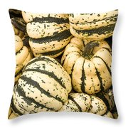 Winter Squash Throw Pillow