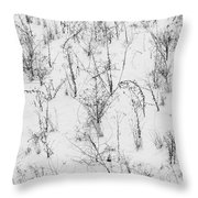 Winter Starkness Throw Pillow