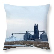 Winter Storage II Throw Pillow