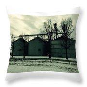 Winter Storage Throw Pillow