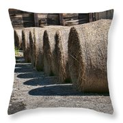 Winter Storage Throw Pillow