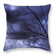 Winter Storm 2 Throw Pillow
