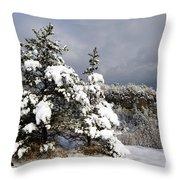 Winter Storm On Natural Bridge - D001598 Throw Pillow