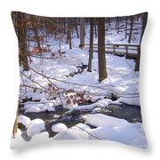 Staying Power Throw Pillow