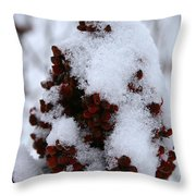 Winter Sumac Throw Pillow