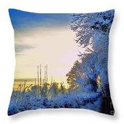 Winter Sunburst Throw Pillow