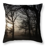 Winter Sunrise Throw Pillow