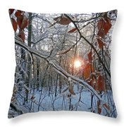 Winter Sunset 2 Throw Pillow