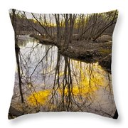 Winter Sunset At Williston Mill Throw Pillow