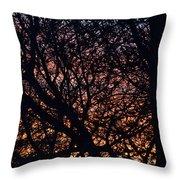 Winter Sunset Silhouette Throw Pillow