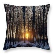 Winter Sunset Through The Trees Throw Pillow