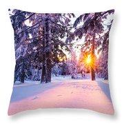 Winter Sunset Through Trees Throw Pillow by Priya Ghose