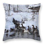 Winter Swimming Hole Throw Pillow