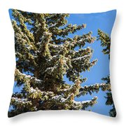 Winter Tale - Featured 3 Throw Pillow