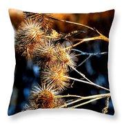 Winter Thistles  Throw Pillow