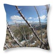 Winter Thorns Throw Pillow