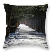 Winter Trail Throw Pillow